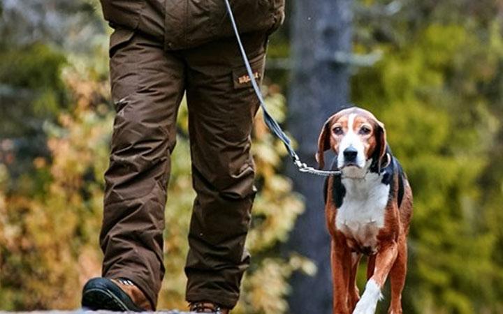 Bästa jaktbyxan 2019